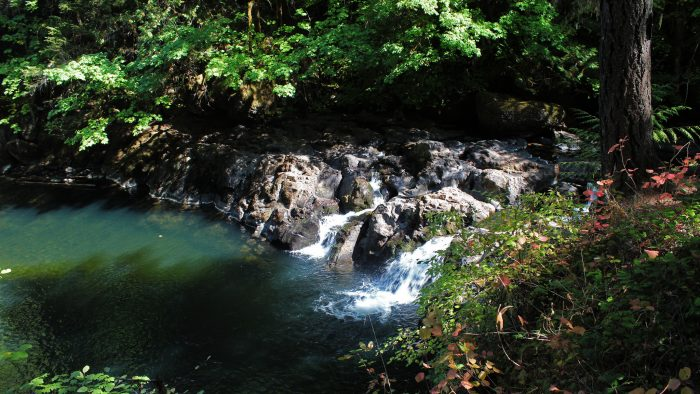 8 Gorgeous Waterfalls In Oregon Where You Can Swim In The