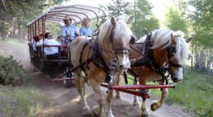 The Wagon Ride Dinner In Montana Everyone Should Experience At Least Once