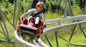 The Mountain Coaster Near Buffalo That Will Take You On A Ride Of A Lifetime