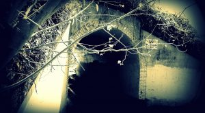 Stay Away From DC's Most Haunted Street After Dark Or You May Be Sorry