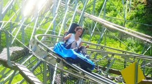 The Mountain Coaster In Pennsylvania That Will Take You On A Ride Of A Lifetime