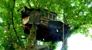 Sleep Underneath The Forest Canopy At This Epic Treehouse In Idaho