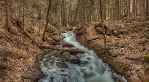 9 Under-Appreciated State Parks In New Hampshire You're Sure To Love