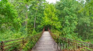 Take This Enchanted Trail In Mississippi For A Truly Magical Journey