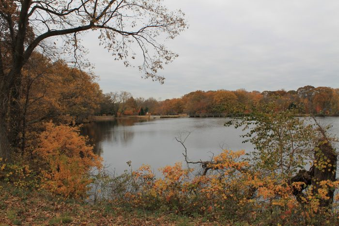 9 Gorgeous Lakes In Delaware That You Must Check Out This