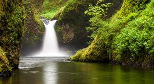 8 Gorgeous Waterfalls In Oregon Where You Can Swim In The Basin