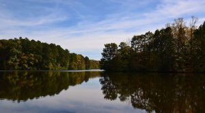 10 Under-Appreciated State Parks In Tennessee You're Sure To Love