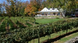The Remote Winery in New Hampshire That's Picture Perfect for a Day Trip