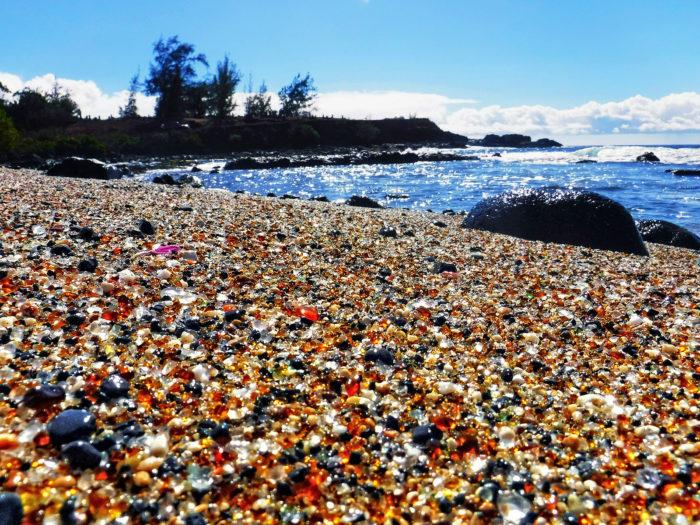 Porkyland Pacific Beach Ca