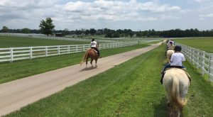 If You've Never Visited Kentucky's Horse Park You're Truly Missing Out