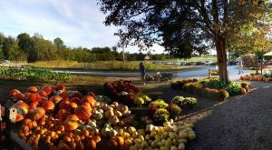There's A Bakery On This Beautiful Farm In Kentucky And You Have To Visit