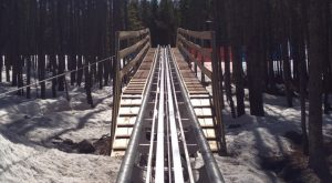 The Mountain Coaster In Colorado That Will Take You On A Ride Of A Lifetime