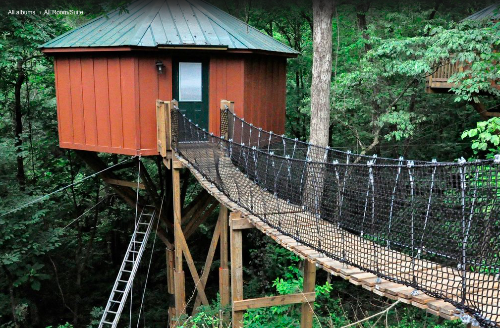 Sleep Underneath The Forest Canopy At This Epic Treehouse