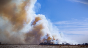 Wildfires Are Raging Through Oklahoma And Are Devastating Parts Of The State