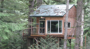 Sleep Underneath The Forest Canopy At This Epic Treehouse Near Portland