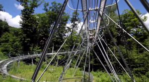 The Mountain Coaster In New York That Will Take You On A Ride Of A Lifetime