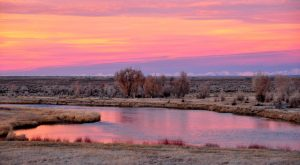 The Magical Natural Oasis Hiding In Wyoming You Absolutely Must Visit