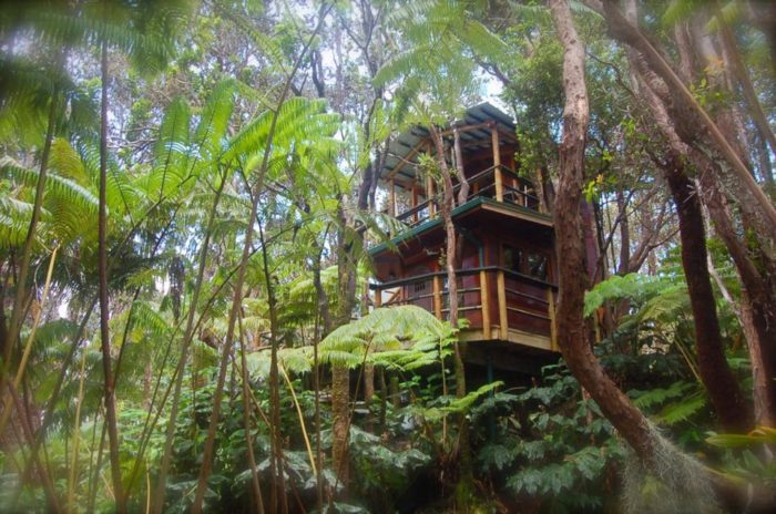 This is the Hawaii Volcano Treehouse and it easily looks as though it has been created from your childhood dreams. & The Positively Enchanting Hawaii Treehouse You Must Experience