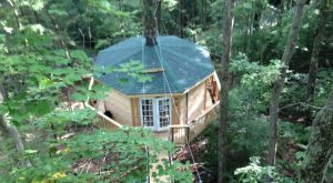Sleep Underneath The Forest Canopy At This Epic Treehouse In West Virginia