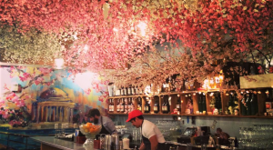 Step Inside The Cherry Blossom Pub That's So Perfectly DC