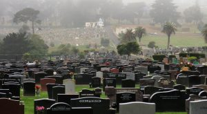 There Are More Dead Bodies Than Living In This Silent City Near San Francisco