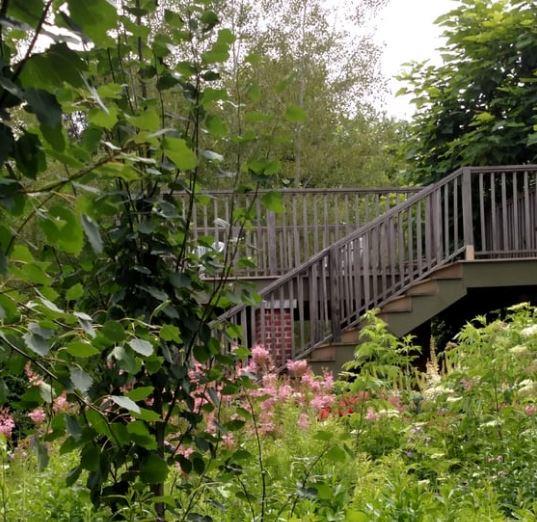 Secret Garden: DeFries Gardens Is The Most Beautiful Secret Garden To