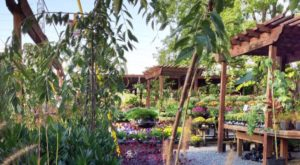 The Secret Garden In Nashville You're Guaranteed To Love