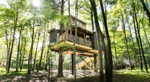 Sleep Underneath The Forest Canopy At This Epic Treehouse In Ohio