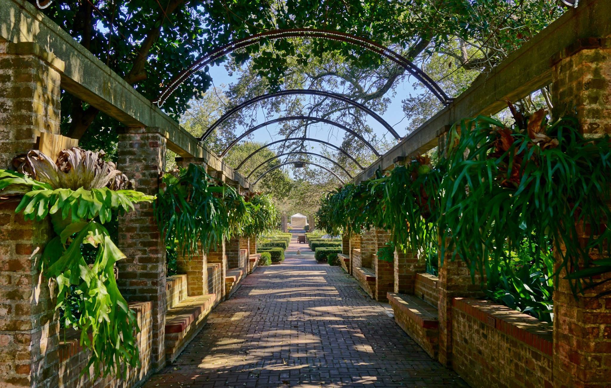 City Park Botanical Gardens In New Orleans Looks Like Narnia
