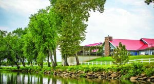The Remote Winery In Ohio That's Picture Perfect For A Day Trip