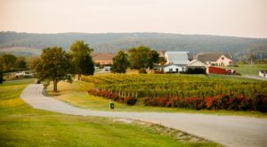 The Tiny Town In Missouri That's The Next Wine Capital Of The World