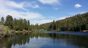 A Day Trip To This Tranquil Lake In Southern California Is The Stuff That Dreams Are Made Of