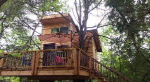Sleep Underneath The Forest Canopy At This Epic Treehouse In Oklahoma