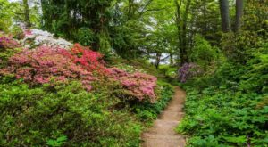 The Secret Garden In Maryland You're Guaranteed To Love