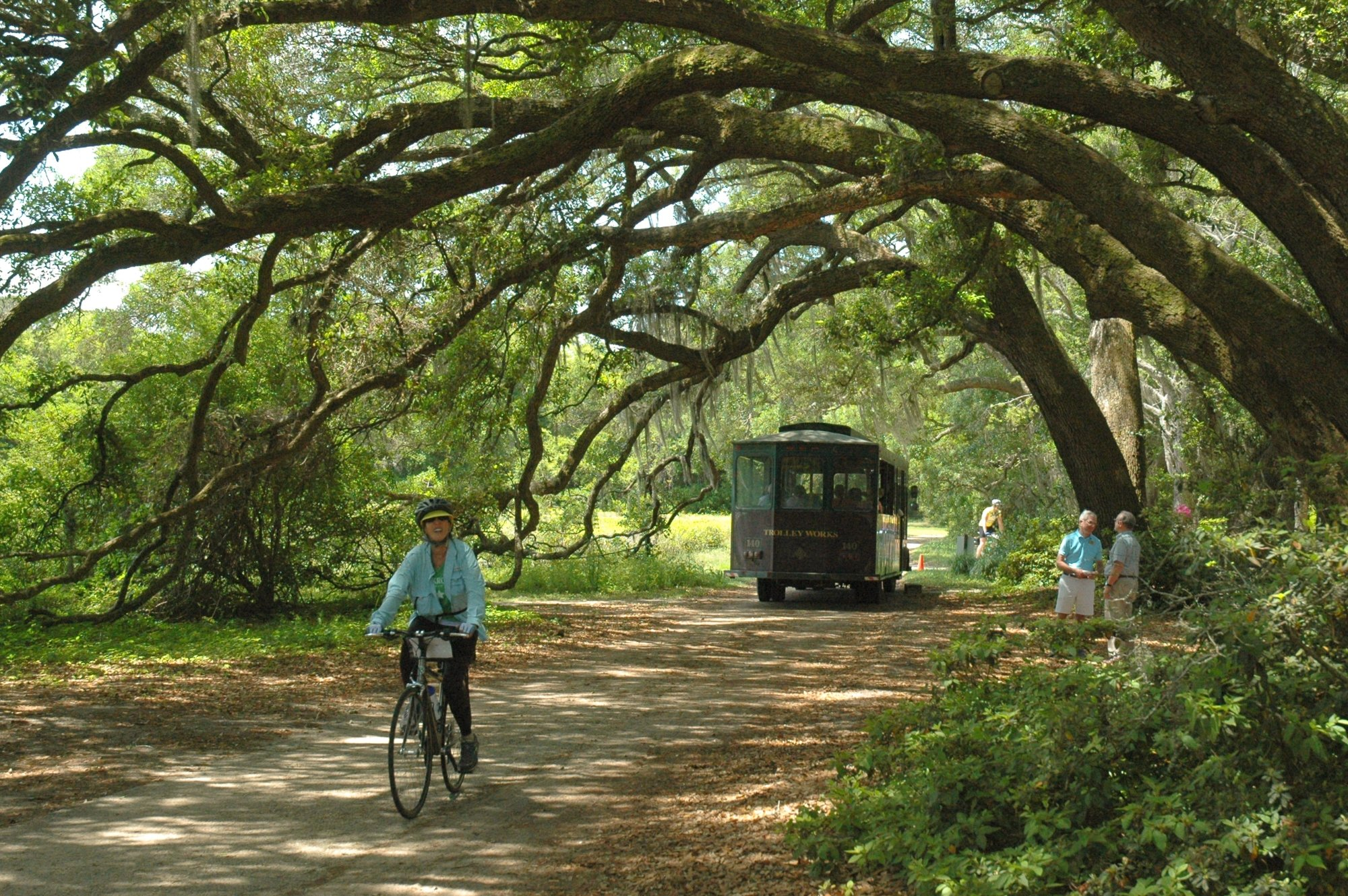 These 15 outdoor activities in south carolina are totally free for Things to do in charleston nc