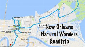 This Natural Wonders Road Trip Will Show You New Orleans Like You've Never Seen It Before