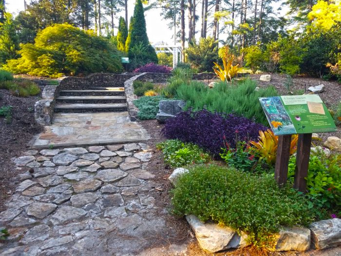 botanical gardens charleston sc these 15 outdoor activities in south carolina are totally free