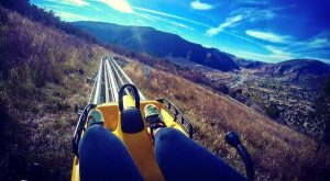 The Mountain Coaster Near Denver That Will Take You On The Ride Of A Lifetime