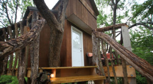 Sleep Underneath The Forest Canopy At This Epic Treehouse In Kansas