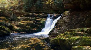 12 Easy Hikes To Add To Your Outdoor Bucket List In New Jersey