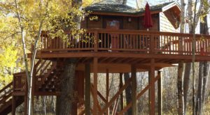 Sleep Underneath The Forest Canopy At These Epic Treehouses In Montana
