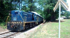 The South Carolina Easter Train Ride That'll Make You Feel Like A Kid Again