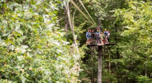 The Epic Zipline In Ohio That Will Take You On An Adventure Of A Lifetime