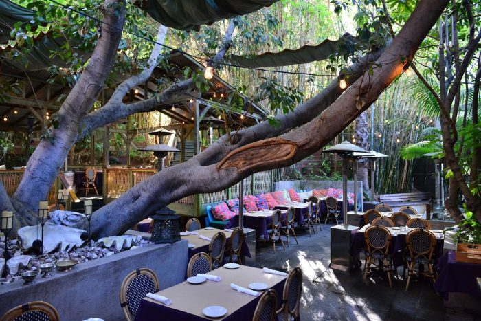 Cliff S Edge Is An Enchanting Treehouse Restaurant In