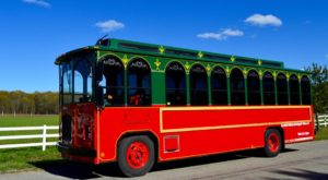 The Michigan Wine Trolley Tour You'll Absolutely Love