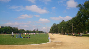 The 10 Best Places In Washington DC To Go On An Unforgettable Picnic