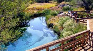 10 Wildlife Sanctuaries In Nevada Most People Don't Even Know Exist