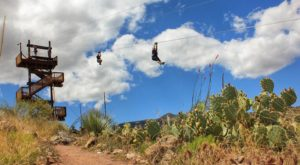 The Epic Zipline In Arizona That Will Take You On An Adventure Of A Lifetime