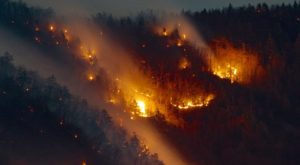 A Wildfire Is Ripping Through A National Park In North Carolina And It's Truly Heartbreaking