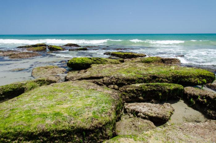 Kure Beach Tide Chart